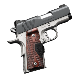 Kimber Stainless Ultra Carry
